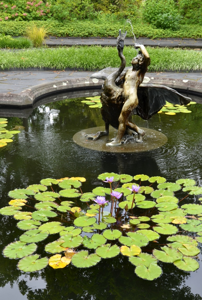 The Water Lily Garden at Ladew Topiary Garden