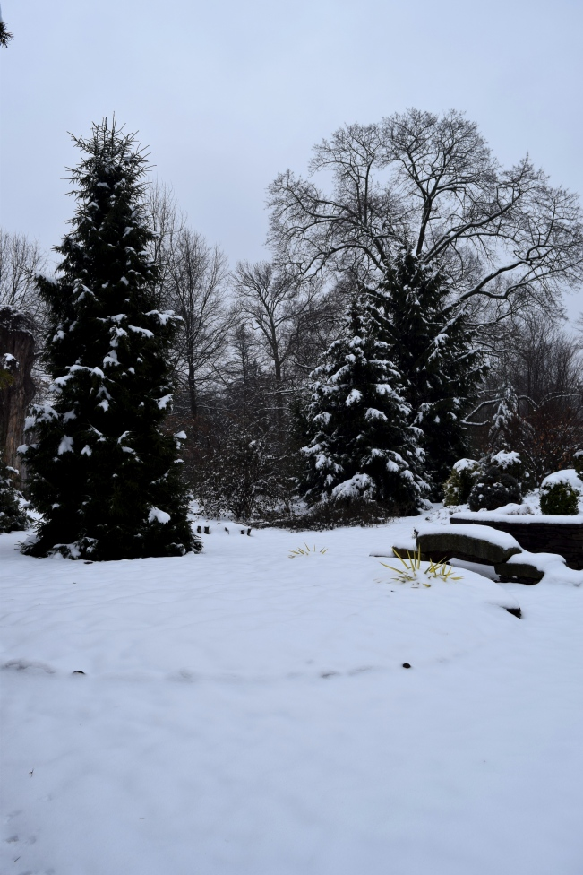 Snow outlines the bridge and trees in the Sunset Garden At Northview